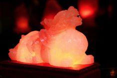 Top 5 mẫu đèn đá muối phong thủy được khách hàng mua nhiều dịp cuối năm
